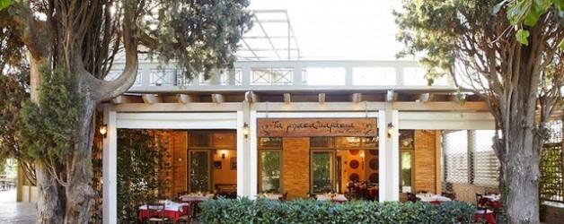 Τα Μπακαλιαράκια της 'Ανοιξης Άνοιξη Εστιατόριο Αθήνα